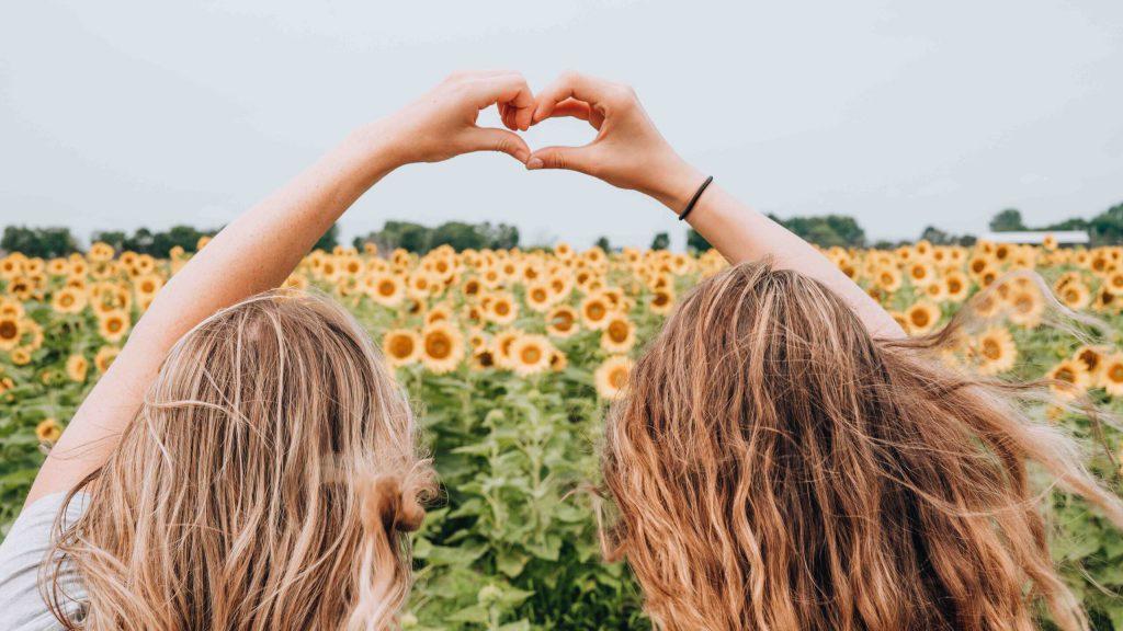Svenska influencers tjejer på ett svenskt solrosfält i Sverige bästa vänner